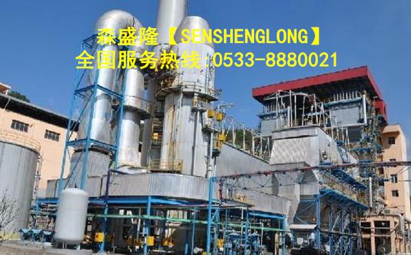 锅炉除垢剂SZ818高效型